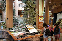 World Forestry Center - Discovery Museum, Portland, United States