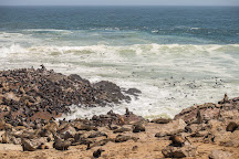 Cape Cross, Erongo Region, Namibia