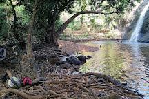Aanachadikuth Waterfalls, Thodupuzha, India