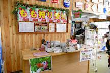 Misaka Farm Grape House, Fuefuki, Japan