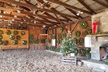 Jones Family Farm, Shelton, United States