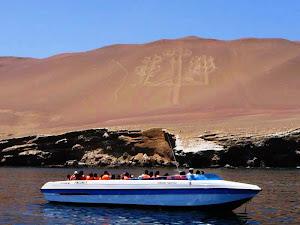 Dolphin Travel Perú - Agencia de Turismo en Ica 4