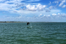South Padre Island Dolphin Research & Sea Life Nature Center, Port Isabel, United States