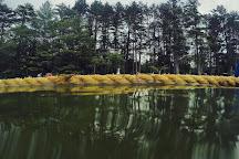 Newfound Lake, Grafton, United States