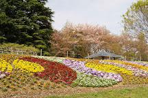 Osaki Park, Saitama, Japan