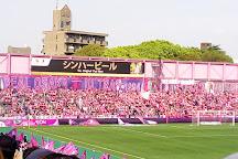 Kincho Stadium, Osaka, Japan