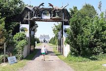 Dinopark Landgoed Tenaxx, Wedde, The Netherlands