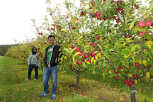 Spring Valley Orchard, Donnybrook, Australia