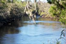 Suwannee River State Park, Live Oak, United States