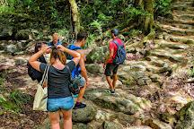 Discovery Tours Australia, Cairns, Australia