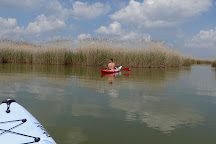 Lake Velence, Velence, Hungary
