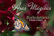 Asas Magicas Borboletario e Parque Ecologico, Porto Seguro, Brazil