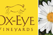 Ox-Eye Vineyards Tasting Room, Staunton, United States
