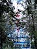 """Ярославский областной радиотелевизионный передающий центр, филиал ФГУП """"РТРС"""", улица Свердлова на фото Ярославля"""