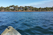Churchill Island Marine National Park, Newhaven, Australia