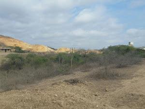 Municipalidad Distrital de San Jacinto 9