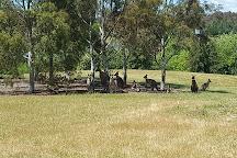 Weston Park, Canberra, Australia