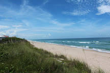 Barrier Island Sanctuary, Melbourne Beach, United States