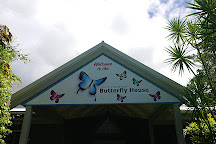 Coffs Harbour Butterfly House, Bonville, Australia