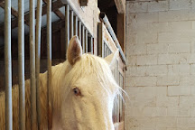 Wildwood Stables, Crossville, United States
