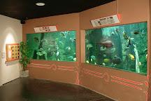 Aquarium des Tropiques, Allex, France