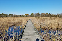 South Cape May Meadows, Cape May, United States