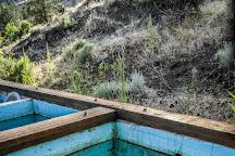 Ritter Hot Springs, Ritter, United States