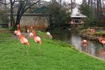 Birmingham Zoo, Birmingham, United States