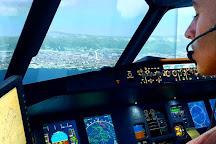 AviaSim et Fighters Academy Genève - Simulateurs de vol, Neydens, France