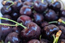 Cheeki Cherries, Cromwell, New Zealand