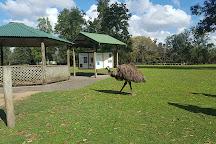 Lone Pine Koala Sanctuary, Brisbane, Australia