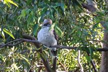 Fred Hollows Reserve, Randwick, Australia