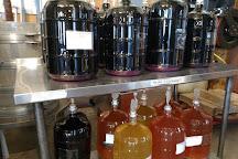 Beneduce Vineyards, Pittstown, United States