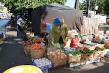 Feria Pinto, Temuco, Chile