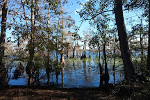 Lake Norris Conservation Area, Eustis, United States