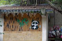 Chongqing Zoo (Chongqing Dongwuyuan), Chongqing, China