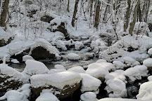 Oirase Gorge, Towada, Japan