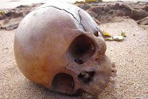 Bone Island Haunted Pub Crawl & Ghost Tour, Key West, United States