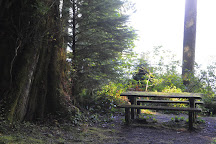 Quinault Rain Forest Ranger Station, Amanda Park, United States