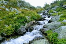Femundsmarka National Park, Roros, Norway