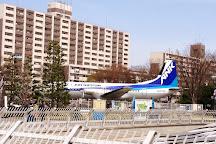 Tokorozawa Aviation Memorial Park, Tokorozawa, Japan