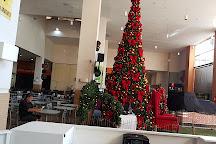 Plaza D'oro Shopping, Goiania, Brazil