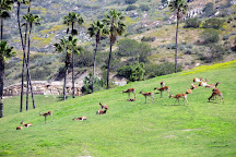 San Diego Zoo Safari Park, Escondido, United States