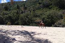 Playa Rincon, Samana Province, Dominican Republic