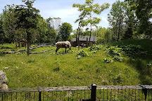 Zoo Ecomuseum, Montreal, Canada