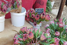 Fourways Farmers Market, Sandton, South Africa