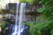 Silver Falls State Park, Silverton, United States
