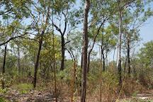 Pudakul Aboriginal Cultural Tours, Darwin, Australia