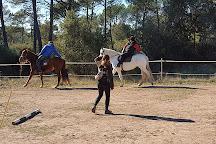 Cavalls de Trulls, Viver, Spain