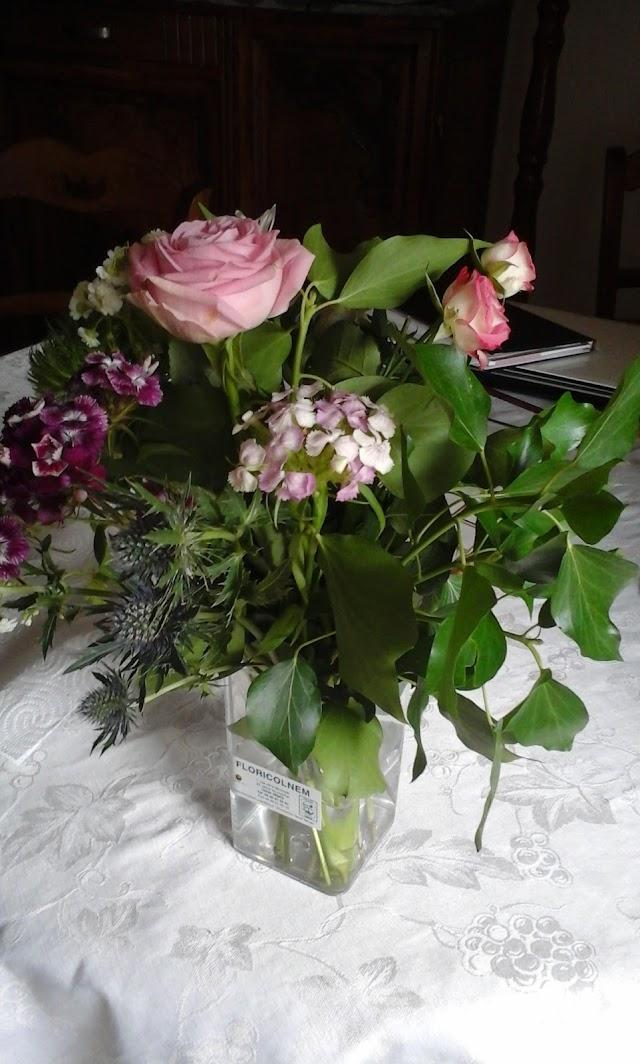 Floricolnem Pichon